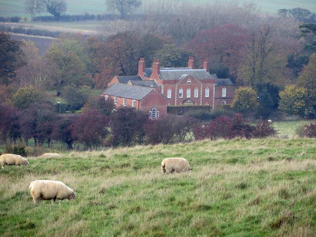 Sheep Grazing near Horkstow Hall