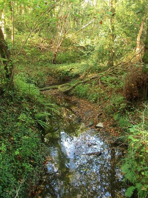 Unnamed Stream near Broxmead Farm