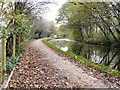 SJ9395 : Peak Forest Canal by Gerald England