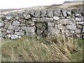 NS5584 : Mini gate in wall by David Robertson