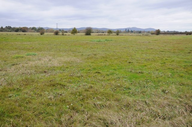 Uckinghall Meadow