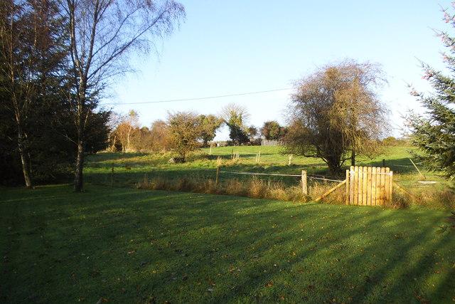 Grazing land - Gormagh Townland