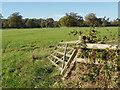 TQ0752 : Fallen gate by Alan Hunt