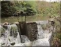 ST6376 : Weir, River Frome by Derek Harper