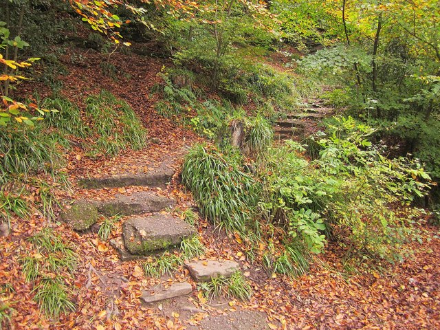 Autumn steps by the Frome