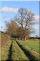 SE7578 : Low Moor Lane by Pauline E