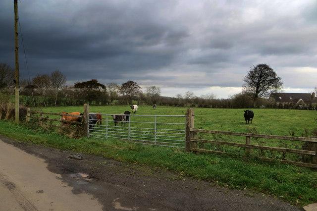 Ballymather Road
