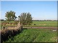TL4369 : Lane, bridle path and fingerpost by John Sutton