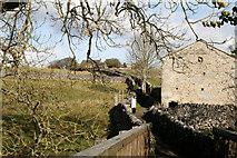 SE0063 : Grassington:  Sedber Lane by Dr Neil Clifton