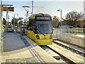 SJ8088 : Metrolink Airport Line, Roundthorn by David Dixon