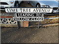 TM1991 : Lime Tree Avenue sign by Adrian Cable