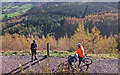 NY2125 : Cyclists in Whinlatter Forest by michael ely