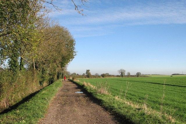 A November walk