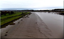 ST5491 : Mud on the west bank of the Wye near Chepstow by Jaggery
