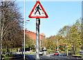 "J3371 : ""Zebra crossing"" sign, Belfast (November 2014) by Albert Bridge"