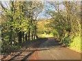 SX3969 : Callington Road by Derek Harper