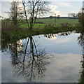 SK7190 : A near perfect reflection by Alan Murray-Rust