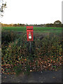 TM1882 : Harleston Road Postbox by Adrian Cable