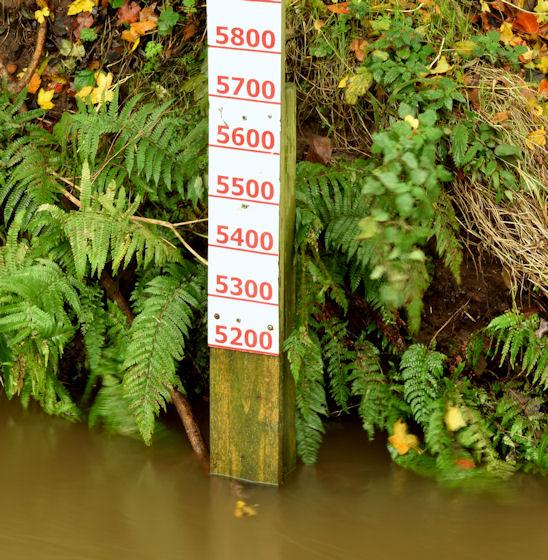 Depth marker, the Knock River, Orangefield Park, Belfast (November 2014)
