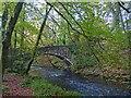 SH4638 : Bridge over Afon Dwyfach by Robin Drayton