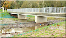 J3773 : The Knock River, Orangefield Park, Belfast - November 2014(3) by Albert Bridge