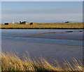 TM4348 : Stony Ditch, Orford Ness by Ian Taylor