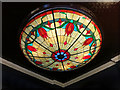 TQ2775 : Roof Light at The Falcon by Des Blenkinsopp