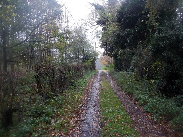 Track and Bridleway near Mansellpark