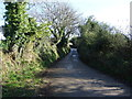 SW8939 : Uphill country lane by JThomas