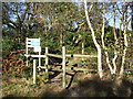 TM4570 : Sandlings Walk by Keith Evans