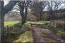 NS0373 : Track near Rhubodach by Alan Reid