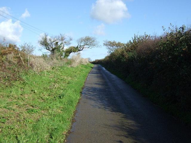 Country lane near Tregilgas