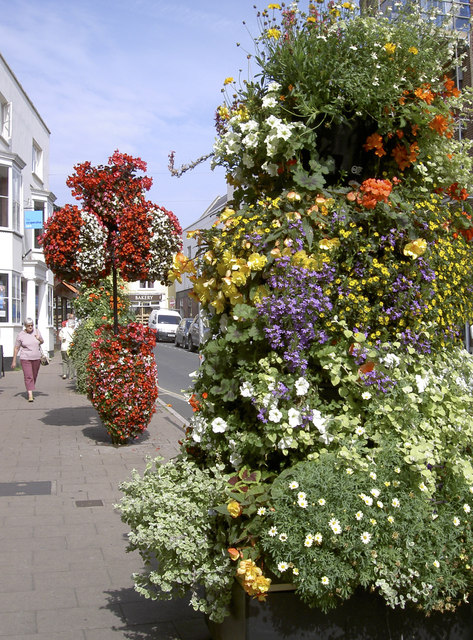 Fore Street flowers