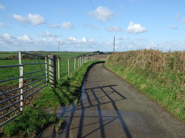 Road to Tregilgas Farm