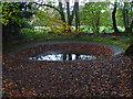 TQ0749 : Dew Pond, North Downs Way by Alan Hunt