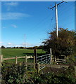 SJ2934 : Pylon in a field on the north side of Old Chirk Road near Gobowen by Jaggery