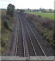 SJ2934 : Railway SSE towards Gobowen by Jaggery