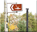 J3473 : Canoeing sign, Ormeau Embankment, Belfast (November 2014) by Albert Bridge