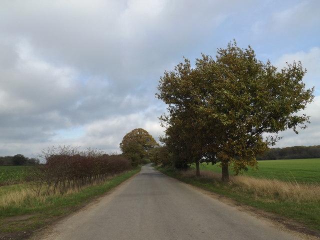 Kiln Lane, Billingford