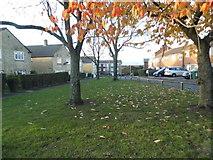 TL0606 : Green on Long John, Hemel Hempstead by David Howard