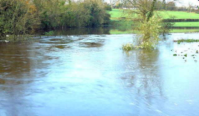 The River Lagan in flood, Drumbeg, Dunmurry - November 2014(1)