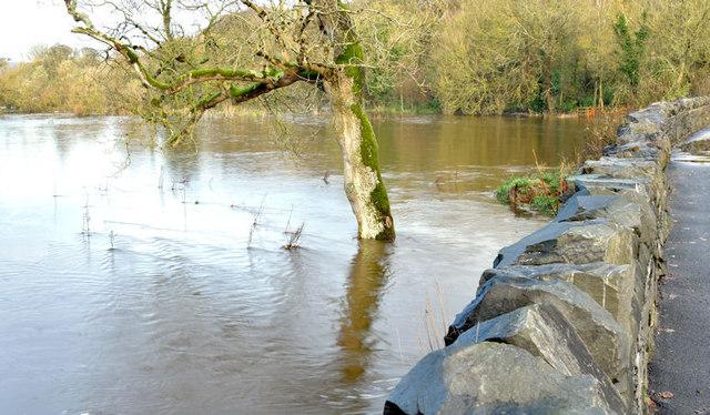 The River Lagan in flood, Drumbeg, Dunmurry - November 2014(2)