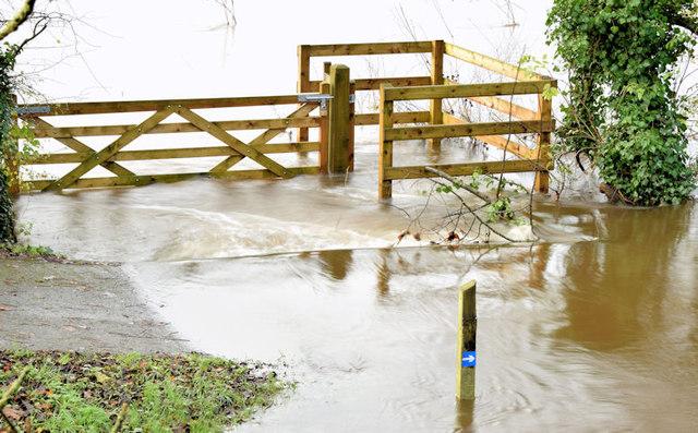 Flooded towpath, Drumbeg, Dunmurry - November 2014(2)