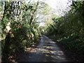 SX2052 : Lane towards West Watergate by JThomas