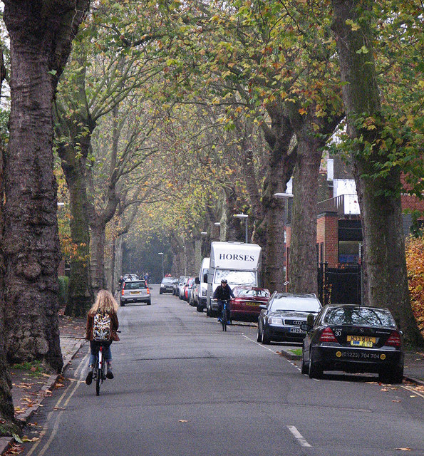 Cyclists on Sidgwick Avenue