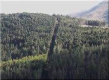J3530 : Forest break on Drinnahillly by Eric Jones