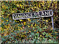 TM1882 : Vaunce's Lane sign by Adrian Cable