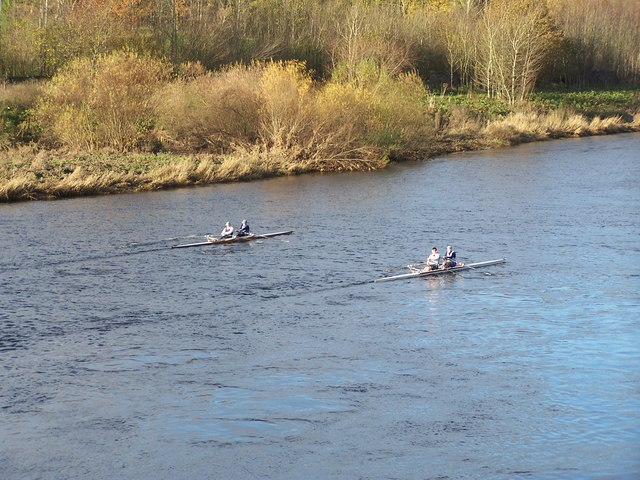 Rowers on the Tweed