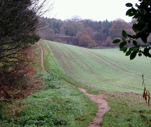 Robin Hood Way, towards Knightcross Dale
