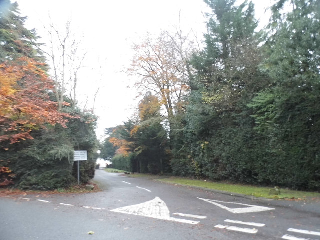 The Downs, Givons Grove